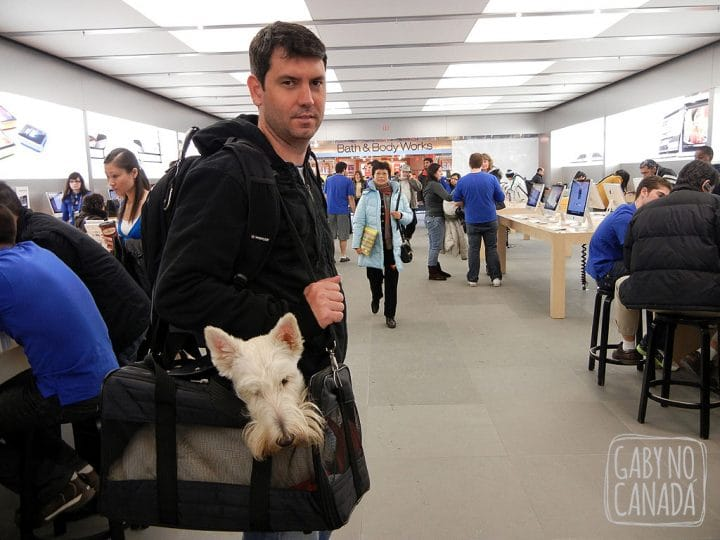 Joe e Ju na Apple Store