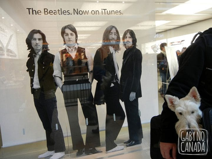 Joe e The Beatles