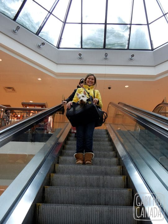 Passeando no Shopping