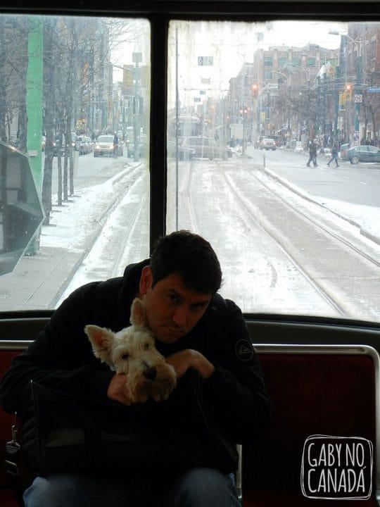 No Streetcar