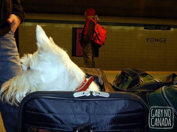 Primeira vez andando de metro