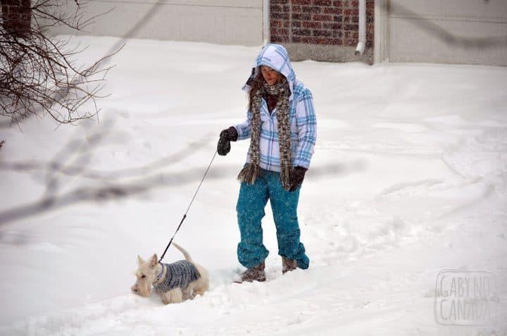 9558ca6609 Onde e quando comprar seu casaco de inverno em Toronto - Gaby no Canadá